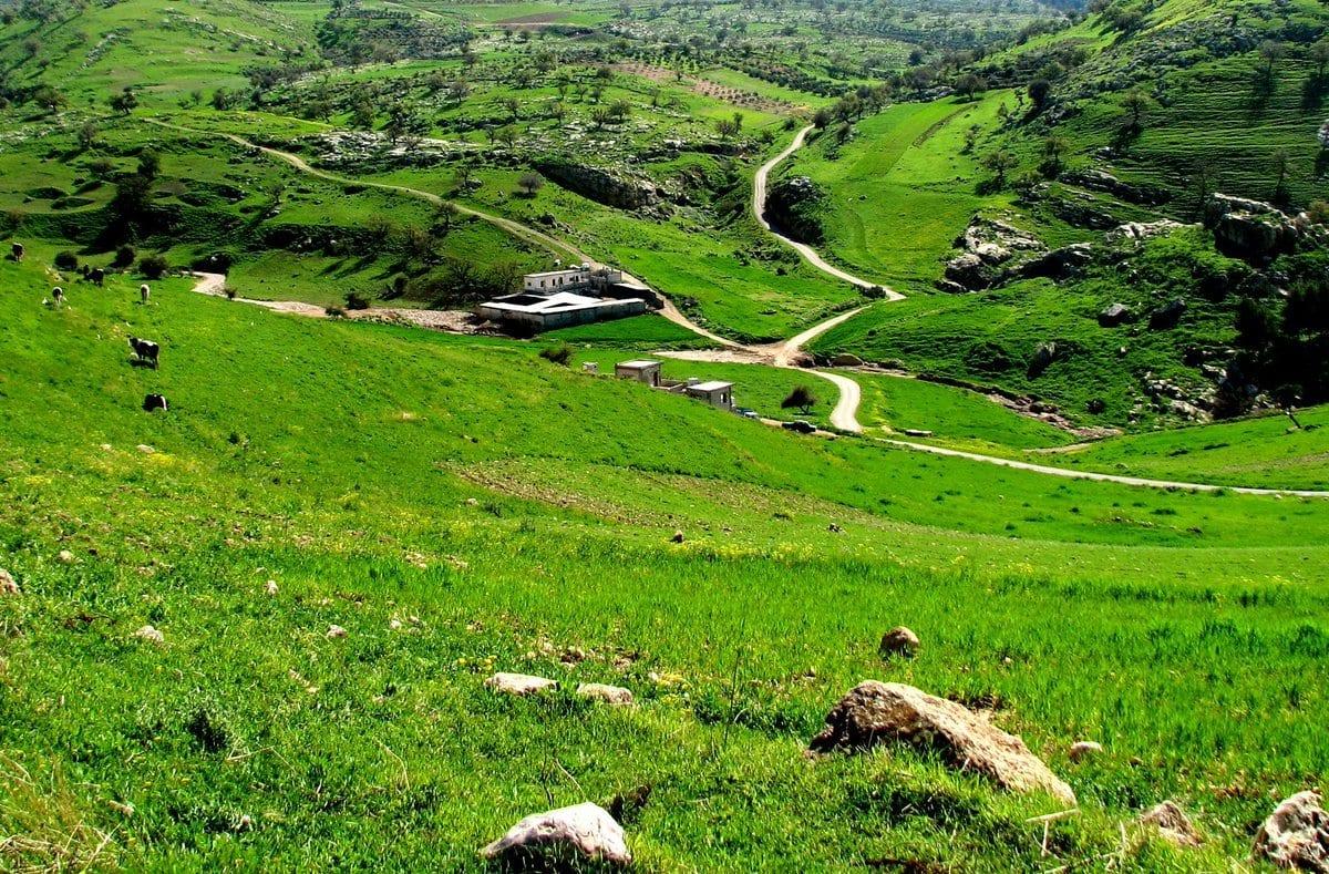 منطقة كفر أبيل في محافظة إربد